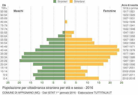 Grafico cittadini stranieri - Appignano 2016