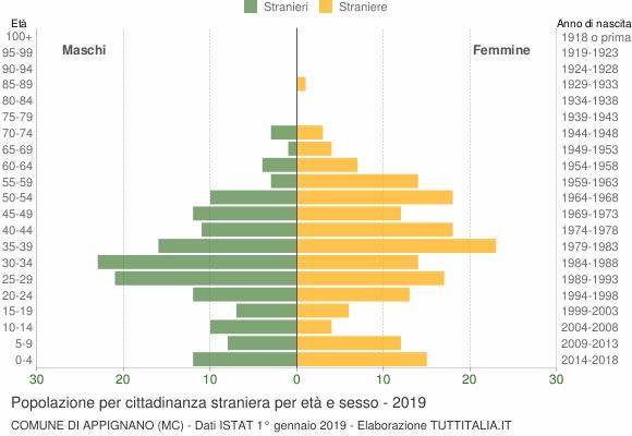 Grafico cittadini stranieri - Appignano 2019
