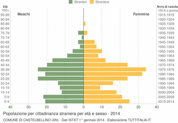 Grafico cittadini stranieri - Castelbellino 2014