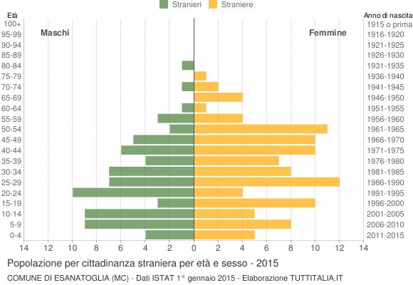 Grafico cittadini stranieri - Esanatoglia 2015