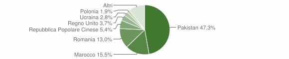 Grafico cittadinanza stranieri - Mogliano 2011