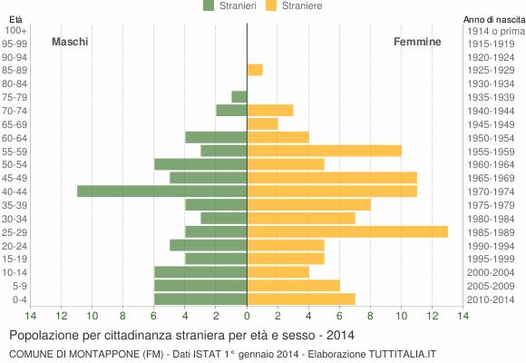 Grafico cittadini stranieri - Montappone 2014