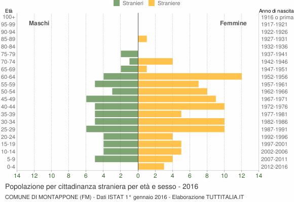 Grafico cittadini stranieri - Montappone 2016