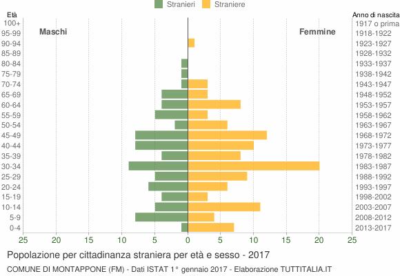 Grafico cittadini stranieri - Montappone 2017