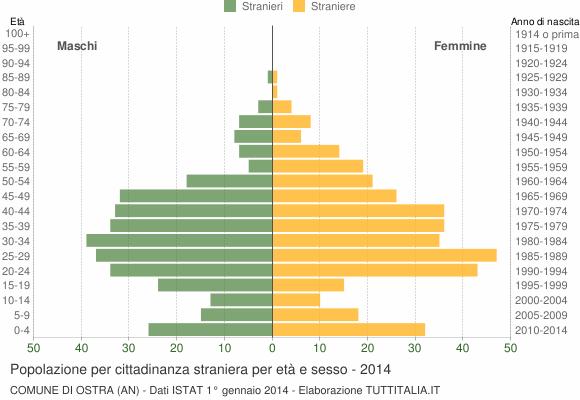Grafico cittadini stranieri - Ostra 2014