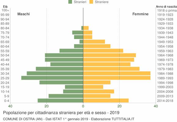 Grafico cittadini stranieri - Ostra 2019