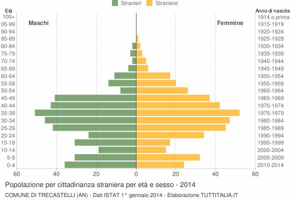 Grafico cittadini stranieri - Trecastelli 2014