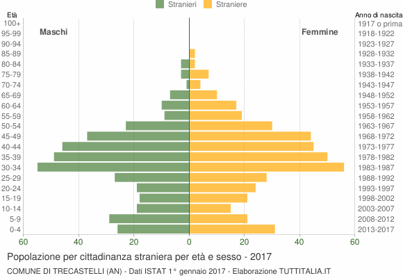 Grafico cittadini stranieri - Trecastelli 2017