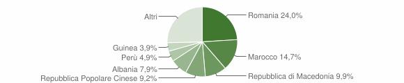 Grafico cittadinanza stranieri - Treia 2017