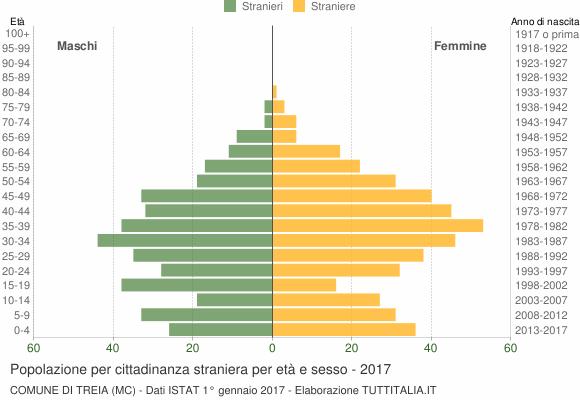 Grafico cittadini stranieri - Treia 2017