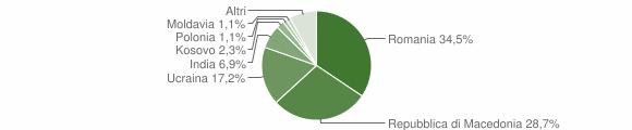 Grafico cittadinanza stranieri - Visso 2017