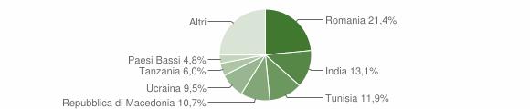 Grafico cittadinanza stranieri - Mergo 2017