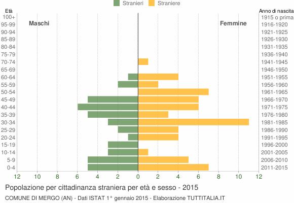 Grafico cittadini stranieri - Mergo 2015