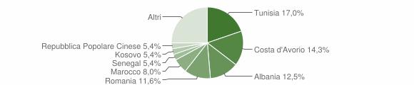 Grafico cittadinanza stranieri - Barbara 2013
