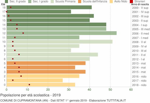 Grafico Popolazione in età scolastica - Cupramontana 2019