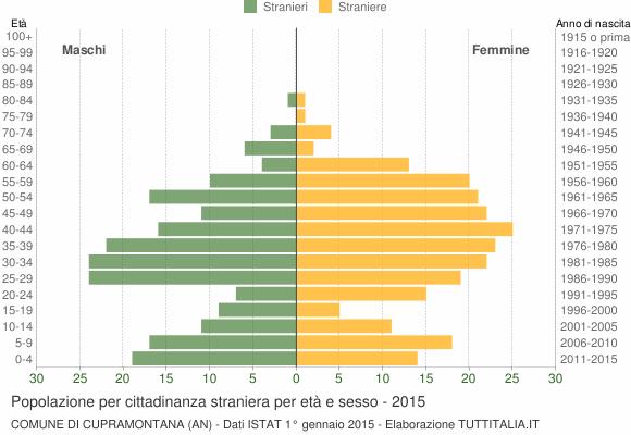 Grafico cittadini stranieri - Cupramontana 2015