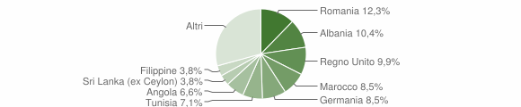 Grafico cittadinanza stranieri - Ripatransone 2009