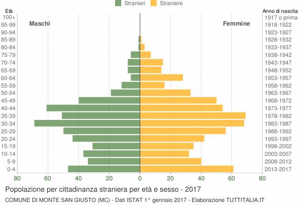 Grafico cittadini stranieri - Monte San Giusto 2017
