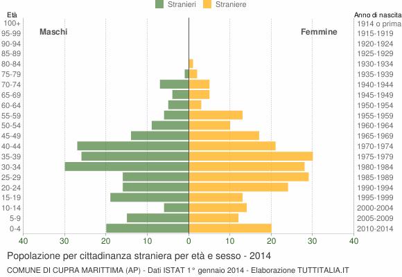 Grafico cittadini stranieri - Cupra Marittima 2014