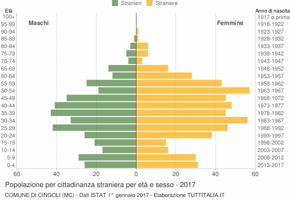 Grafico cittadini stranieri - Cingoli 2017