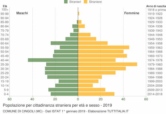 Grafico cittadini stranieri - Cingoli 2019