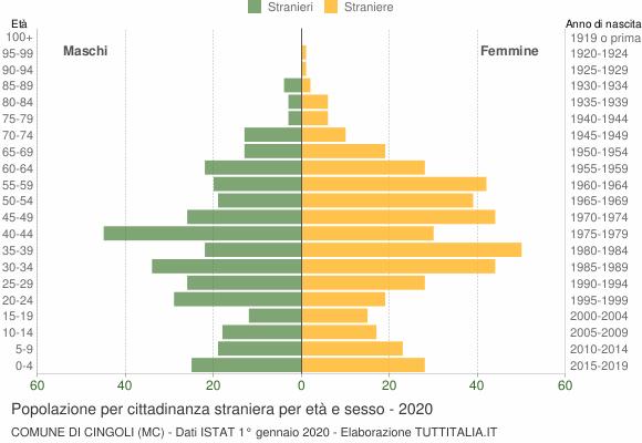 Grafico cittadini stranieri - Cingoli 2020