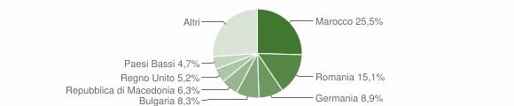 Grafico cittadinanza stranieri - Montefiore dell'Aso 2009