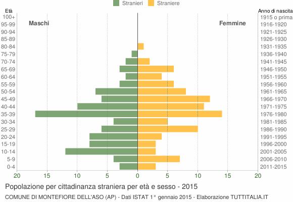 Grafico cittadini stranieri - Montefiore dell'Aso 2015