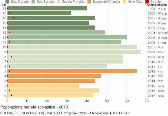 Grafico Popolazione in età scolastica - Polverigi 2018