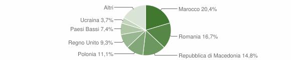 Grafico cittadinanza stranieri - Rotella 2019