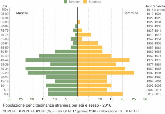 Grafico cittadini stranieri - Montelupone 2016