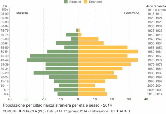 Grafico cittadini stranieri - Pergola 2014