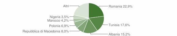 Grafico cittadinanza stranieri - Chiaravalle 2011