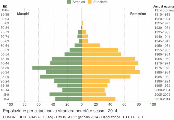 Grafico cittadini stranieri - Chiaravalle 2014