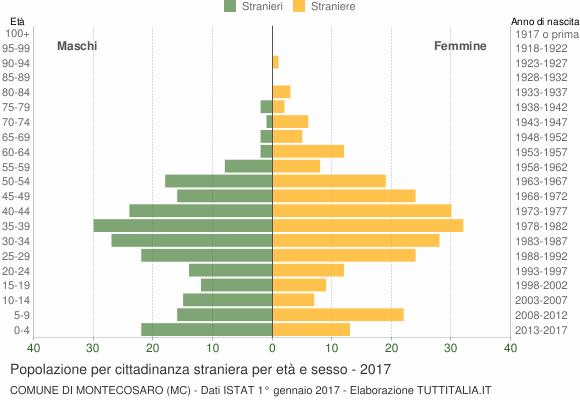 Grafico cittadini stranieri - Montecosaro 2017