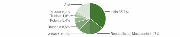 Grafico cittadinanza stranieri - Belvedere Ostrense 2009