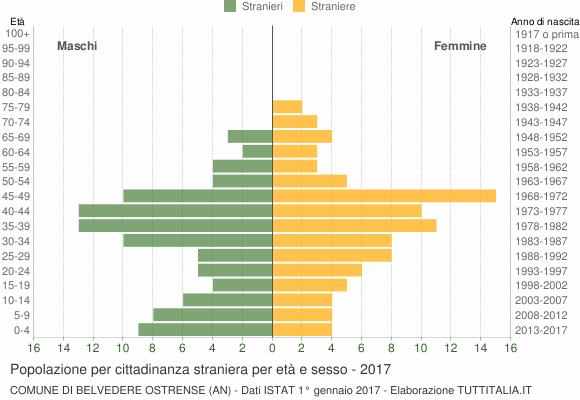 Grafico cittadini stranieri - Belvedere Ostrense 2017