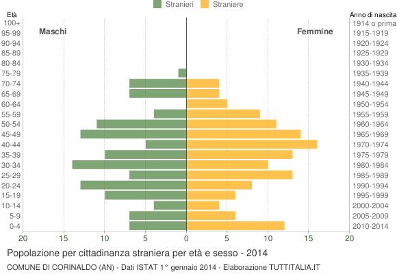 Grafico cittadini stranieri - Corinaldo 2014