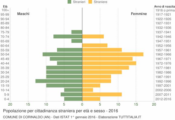 Grafico cittadini stranieri - Corinaldo 2016
