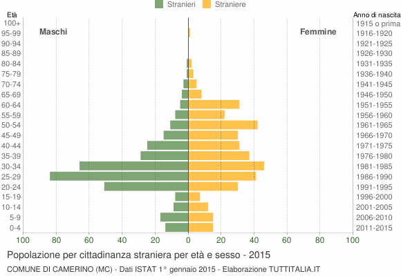Grafico cittadini stranieri - Camerino 2015