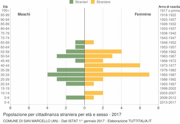 Grafico cittadini stranieri - San Marcello 2017
