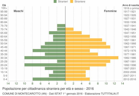 Grafico cittadini stranieri - Montecarotto 2016