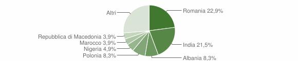 Grafico cittadinanza stranieri - Serra San Quirico 2019