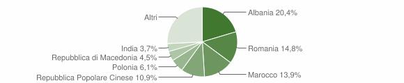Grafico cittadinanza stranieri - 2009