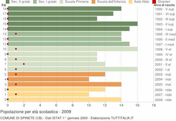 Grafico Popolazione in età scolastica - Spinete 2009