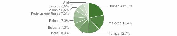 Grafico cittadinanza stranieri - Sesto Campano 2009