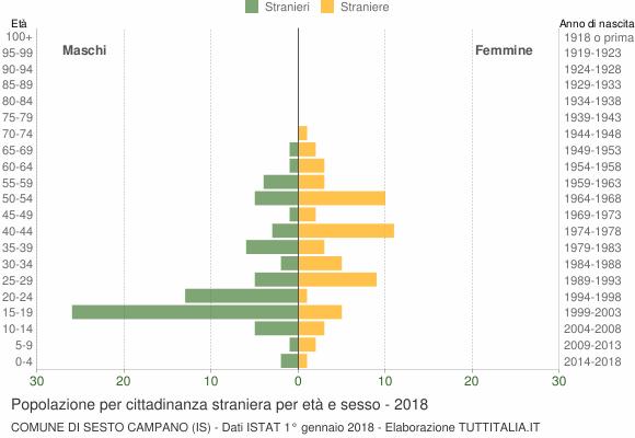 Grafico cittadini stranieri - Sesto Campano 2018