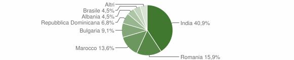 Grafico cittadinanza stranieri - Baranello 2019