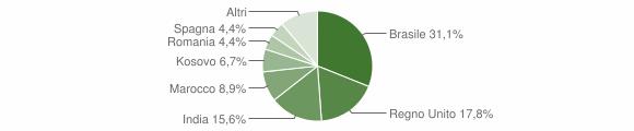Grafico cittadinanza stranieri - Miranda 2019