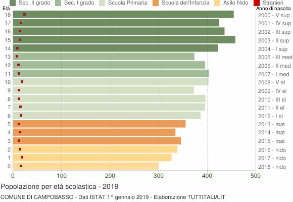 Grafico Popolazione in età scolastica - Campobasso 2019